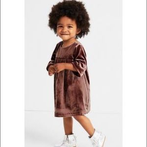Gymboree velvety Dress New with Tags